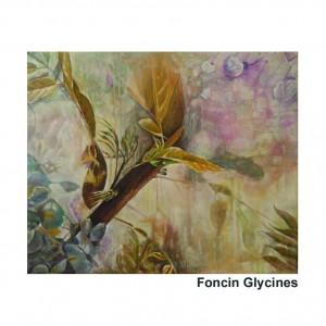 Foncin Glycines
